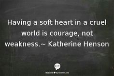 Soft heart in a cruel world.  A recovery from narcissistic sociopath relationship abuse.