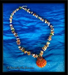 """This one is the ULTIMATE! Red Sunrise Shell """"Beach Candy With A Bite"""" Seashell, Sea Glass & Sharks Teeth Necklace ~"""