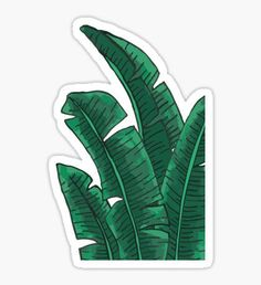 """Monstera "" Stickers by Stickers Cool, Bubble Stickers, Phone Stickers, Journal Stickers, Scrapbook Stickers, Printable Stickers, Planner Stickers, Homemade Stickers, Aesthetic Stickers"