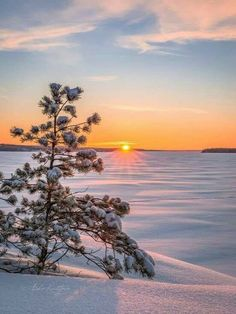 How To Take Landscape Photos Dslr Beautiful World, Beautiful Images, Landscape Photography, Nature Photography, Landscape Photos, Winter Scenery, Winter Sunset, Winter Photos, Beautiful Sunrise