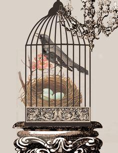 crow+in+birdcage.jpg 1236×1600 pixels