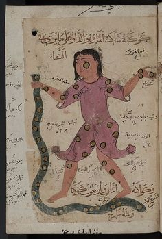 Kitab al-Bulhan or Book of Wonders (late 14thC.) | The Public Domain Review
