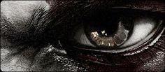 """""""... Es waren die Augen, die ihn derartig aus der Fassung brachten. Die stahlgraue Iris, die eine schimmernde Aura um die schwarzen Pupillen bildete – ihr war ein kaum wahrnehmbares metallisches Blitzen zu eigen. Die leichten Schatten darunter, die bei den meisten Menschen eher einen kränklichen Eindruck erzeugten, verstärkten die Eindringlichkeit seines Blicks nur und sie ließen darauf schließen, dass der Mann auf dem steinernen Stuhl selten schlief ..."""" (Band Eins)"""