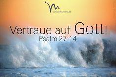 """""""Vertraue auf den Herrn! Sei stark und mutig, vertraue auf den Herrn!"""" Psalm 27:14  #psalm #psalm27 #gott #herr #vertrauen #stark #mutig #angstlos #zuversicht #glaube #glaubensimpulse #bibel #bibelvers"""
