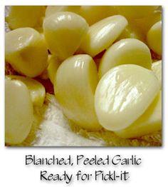 Pickl-it Garlic