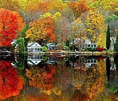 Fall foliage in the northeast