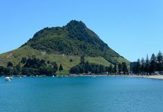 In a pollution-free environment like you'll find in New Zealand, it's much easier to embrace a healthy lifestyle.