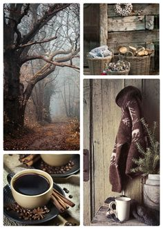 Fall is a grand and quiet time! Autumn Aesthetic, Autumn Cozy, Terracota, Hello Autumn, Colour Board, Autumn Inspiration, Fall Halloween, Hygge, Autumn Leaves