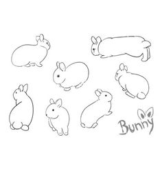Set of drawing small bunny vector 576848 - by vlastas on VectorStock®