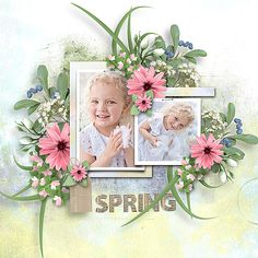 Garden Features, Layouts, Floral Wreath, Scrapbooking, Cottage, Wreaths, Collections, Creative, Design