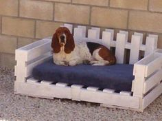 Pallet dog bed pic idea :)