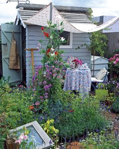 Tales from a Cottage Garden: shed chic
