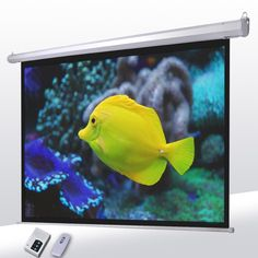 "Electric Projector Screen Wall Celling Mounted 100"" 4:3"