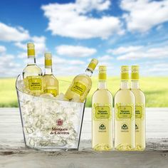 Marqués de #Cáceres Rueda white #wine