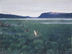 The Twelwe Wild Ducks Artwork By Theodor Kittelsen Oil Painting & Art Prints On Canvas For Sale Nature Paintings, Animal Paintings, Landscape Paintings, Landscapes, Illustrations, Illustration Art, Goblin, Most Popular Artists, Duck Art