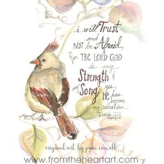 Art prints of original designs by Pam Coxwell are available in standard-ready-to-frame sizes. Bible Verse Art, Scripture Quotes, Bible Scriptures, Drawing Birds Easy, Isaiah 12 2, Bible Promises, Biblical Art, Favorite Bible Verses, Word Of God