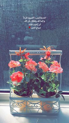 Morning Words, Morning Morning, Morning Texts, Morning Messages, Morning Greeting, Love Words, Beautiful Words, Arabic Poetry, Islamic Quotes Wallpaper