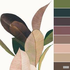 Rubber plant (?) hues? Color Enchantment #design inspiration #interiordesign #interiordesignbusiness