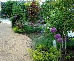 Rose garden design on pinterest colorful roses small - Jardines interiores pequenos ...