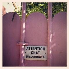"""Villa Olivier Métra """"Attention chat en psychanalyse"""""""