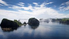 返せ!北方領土 @zenbukaese  9月28日 色丹島の自然(5 http://nanyo.club/?p=325  #北方領土 #北方領土返還