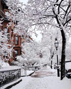 Night Aesthetic, City Aesthetic, Aesthetic Images, Aesthetic Wallpapers, Korean Aesthetic, Winter Snow, Winter Christmas, Boston City Hall, Boston Winter