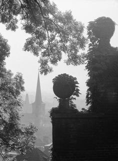 Zídka s břečťanem (3267-7), Praha, říjen 1964 • |black and white photograph, Prague|