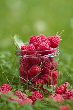 Raspberries ~ My Grandmother had a garden that probably had every imaginable fruit or vegetable. These beauties remind me of her asking me to go out to the garden and get some raspberries. She would instantly transform the raspberries into some incredibly delicious dessert! I sure do miss my Grandma!