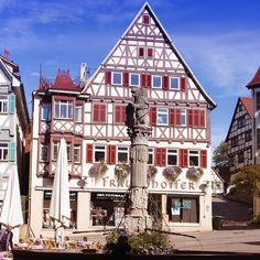 Der Marktbrunnen mit der Löwensäule, gebaut im Jahr 1681 - © Taxi Schwaben in Herrenberg