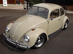L620 Savanna Beige '67 Beetle | 1967 VW Beetle./ JUST LIKE MINE,LOVED IT : )