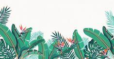 Charlotte Day | Illustrator | Central Illustration Agency #florals #vegetation #botanical #painterly #leaves #wildlife #illustration