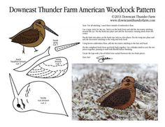 American Woodcock Pattern, Timberdoodle Bird Stuffed Animal Pattern,  How to Make a Toy Animal Plushie Tutorial Plushies Tutorial , BIRDS Diy Projects, Sewing Template , animals, plush, soft, plush, toy, pattern, template, sewing, diy , crafts, kawaii, cute, sew, pattern,free bird template, free pdf handmade felt bird