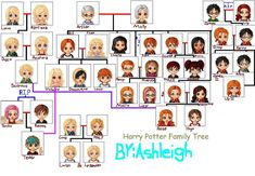 The family tree of harry potter