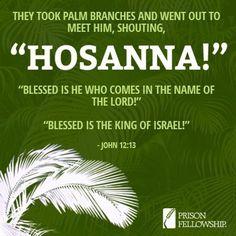 when Jesus entered Jerusalem the crowd shouted Hosanna