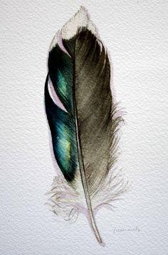 Original Watercolor Feather Study 177 Mallard feather by jodyvanB