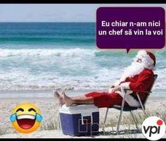 Le Chef, Christmas Humor, Comedy, Meme, Funny, Outdoor Decor, Sports, Internet, Wine