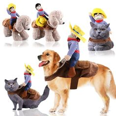 Ride Cowboy Dog Pet Costume Doll Novelty Pet Costume – Pretty Little Deal Store Funny Animal Videos, Funny Animals, Cute Animals, Animals Dog, Videos Funny, Cowboy Dog Costume, Costume Chien, Pet Dogs, Dog Cat