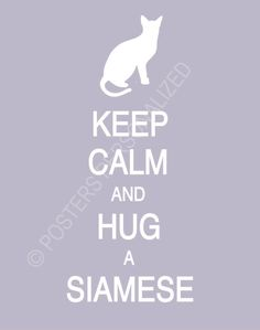 Keep Calm and Hug A Siamese Poster by PostersPersonalized on Etsy, $17.00