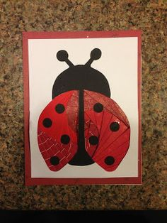 I traced a lady bug in my Craft Robo and cut it out. I found a triangle as the Iris pattern and thats how I got this..