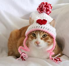 Valentines Day Hat for Cats, Heart Cat Hat, Valentines Day Cat Accessories, Heart Hat for Cats / Kittens / Small Dogs, Valentines Day Cat Pet Breeds, Small Dog Breeds, Small Cat, Small Dogs, Miniature Dog Breeds, Valentines Day Cat, Cat Accessories, Cat Hat, Ginger Cats
