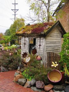 Wish I could find an old shed like this! cook and leons smoke shak done like this !!!!!!!!!!!!!!
