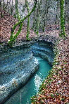 Forest River, France