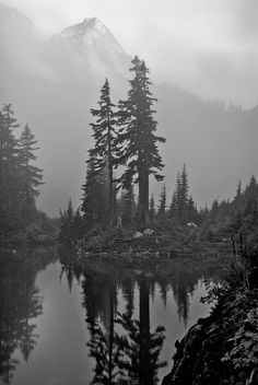 Items similar to Mountain over Trees at Melakwa Lake - Photography Print on Etsy - Jayson McIvor - Natur Tattoo Arm, Natur Tattoos, Lake Photography, Landscape Photography, Mountain Photography, Forrest Tattoo, Wilderness Tattoo, Tree Sleeve, Tattoos Mandala