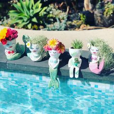Handmade ceramic planters - Home and Garden Decoration Cacti And Succulents, Planting Succulents, Planting Flowers, Succulent Planters, Garden Planters, Garden Art, Garden Design, Plants Are Friends, Cactus Y Suculentas