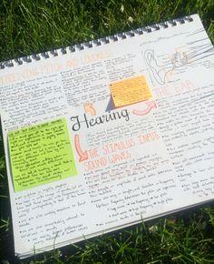 Cute Notes//Orange