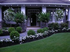 Front Yard Landscaping Design Ideas, Pictures, Remodel, and Decor - page 6
