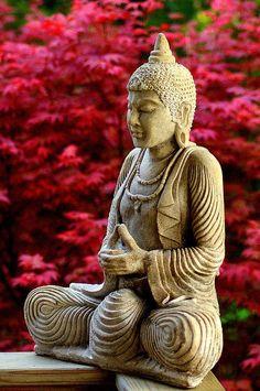 Puedes meditar caminando, sentado, de pie, acostado... Meditar es analizar nuestros procesos mentales o patrones de respuesta mental. Puedes meditar para encontrar caminos y respuestas