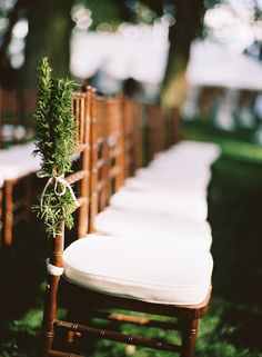 rosemary on the chair--nice nod to old wedding traditions