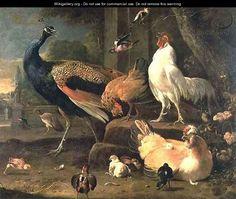 Poultry - Melchior de Hondecoeter