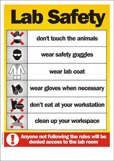More lab stuff bing images safety poster lab safety science safety